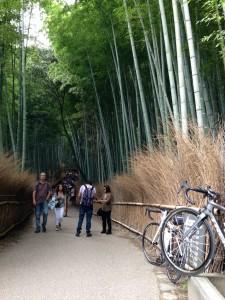 嵐山 竹林 ロードバイク